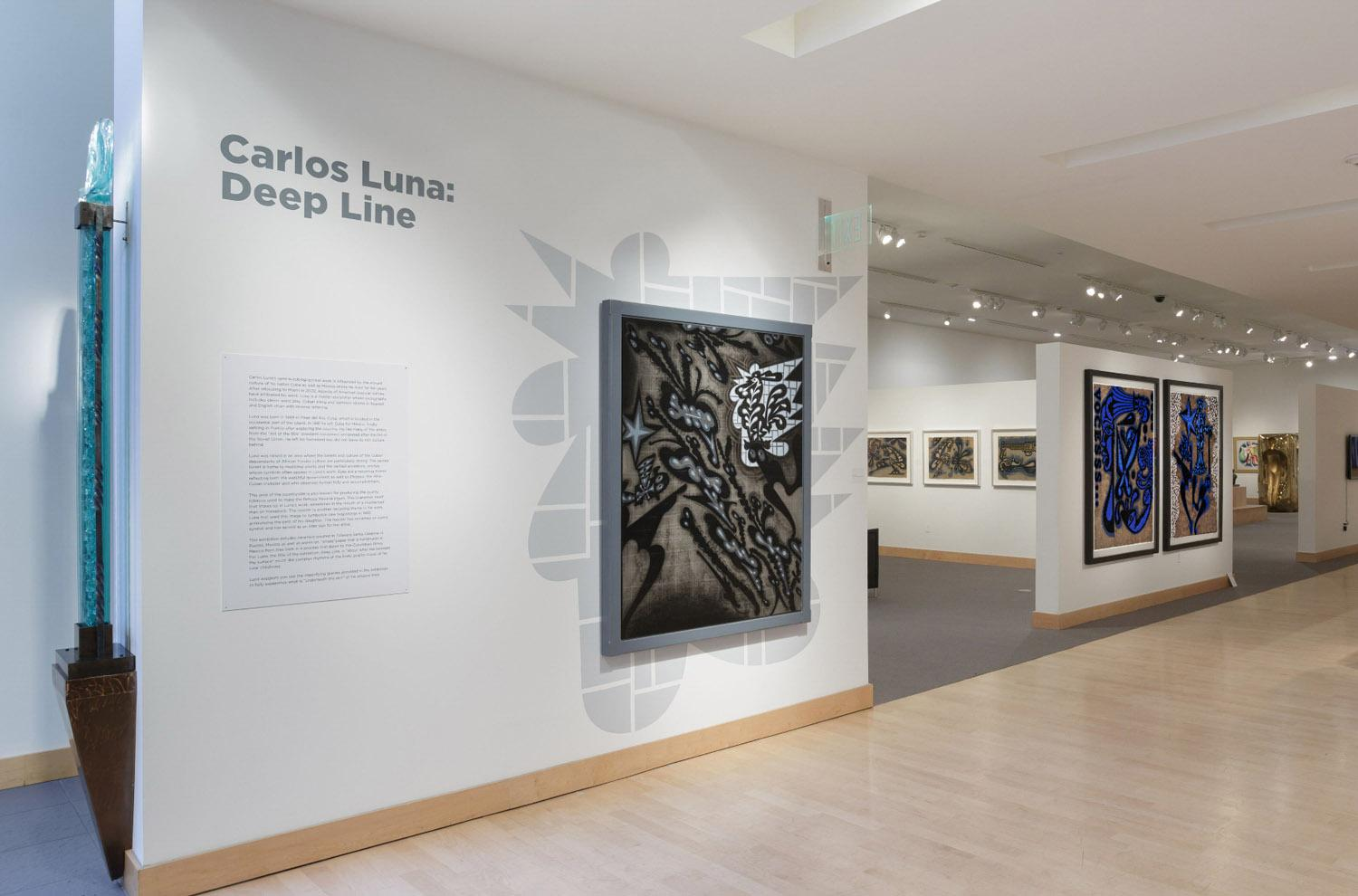 Deep Line, Drawings by Carlos Luna; Boca Raton Museum of Art, Boca Raton, FL, 2017